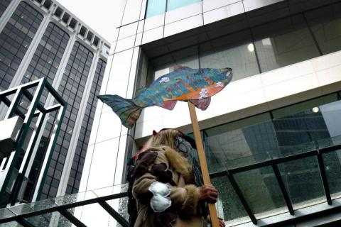 A demonstrator wears representations of sea lice outside the Fisheries and Oceans Canada offices in downtown Vancouver Sept. 24, demanding more action on the Cohen Commission recommendations to protect wild Fraser River sockeye